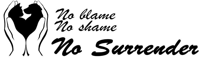 No Surrender Ottawa